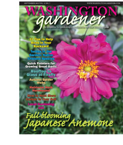 Washington Gardener Magazine