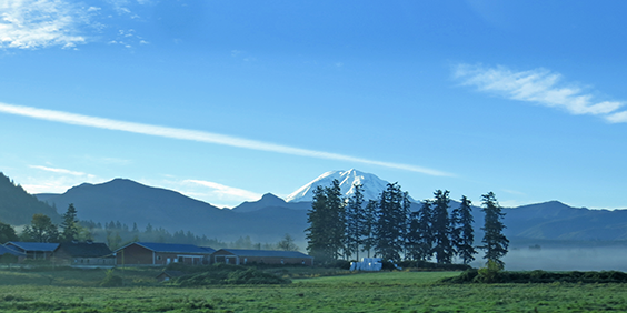View of Mt Rainier from Enumclaw