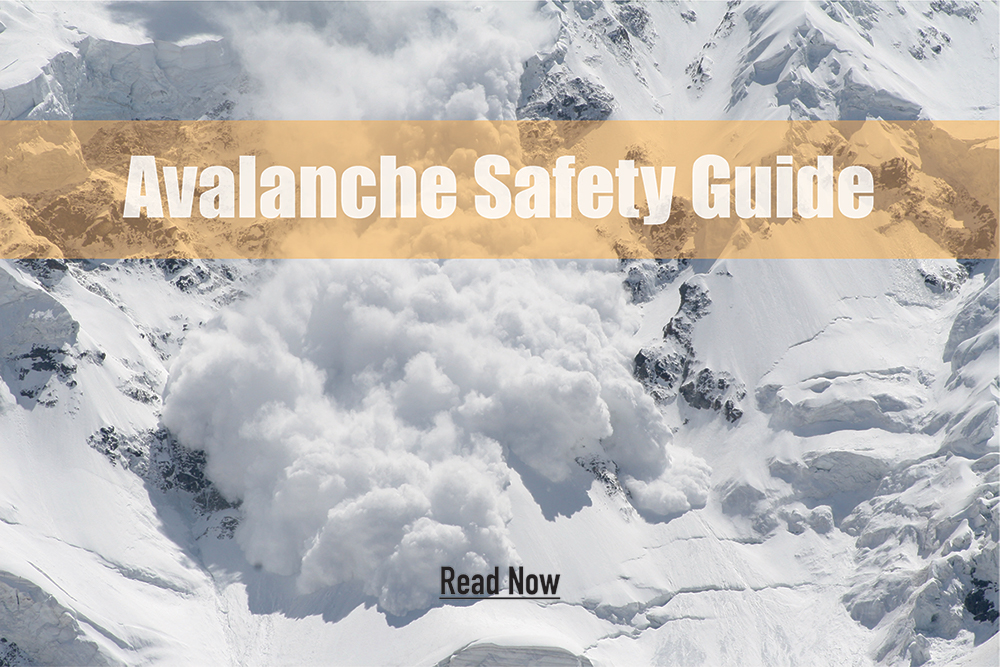 Read Avalanche Safety Guide
