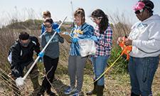 Earth Day teamwork