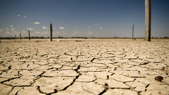 Dried up lakebed