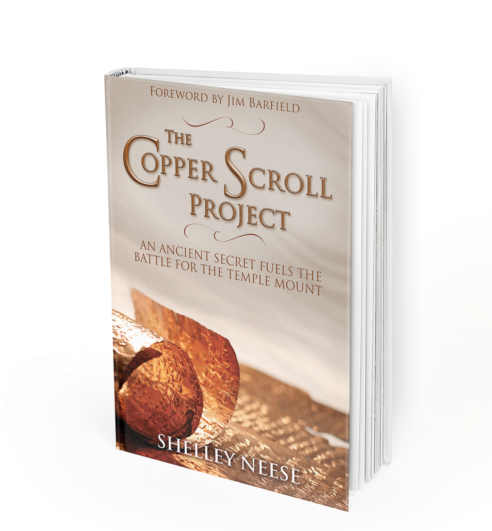 The Copper Scroll Project by Shelley Neese