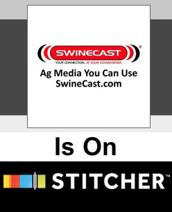 SwineCast On Stitcher