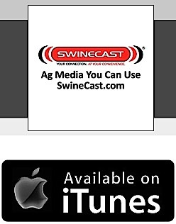 SwineCast on iTunes