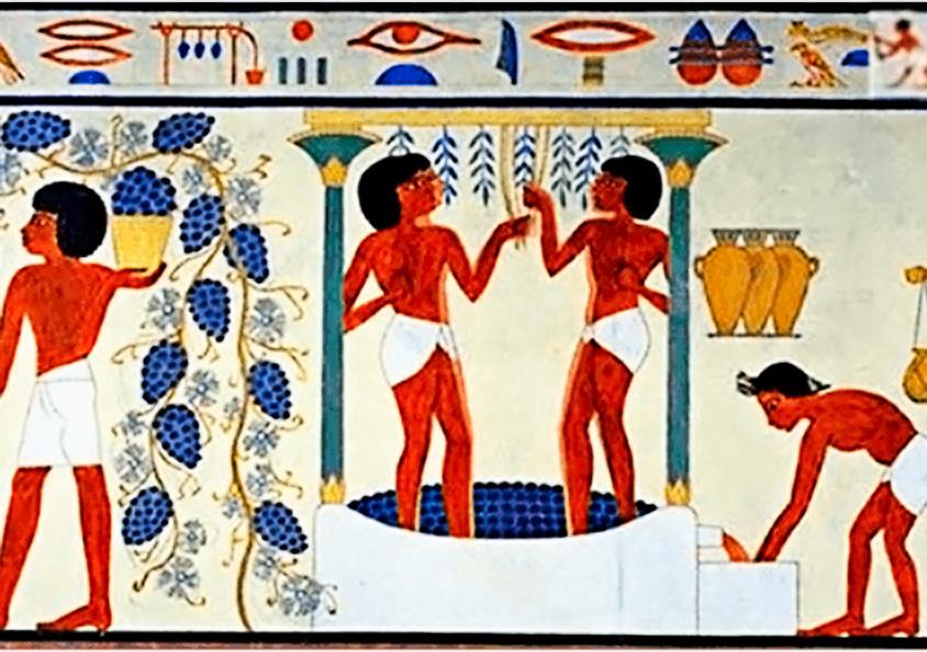 Wein: Kult- und Heilmittel im alten Ägypten