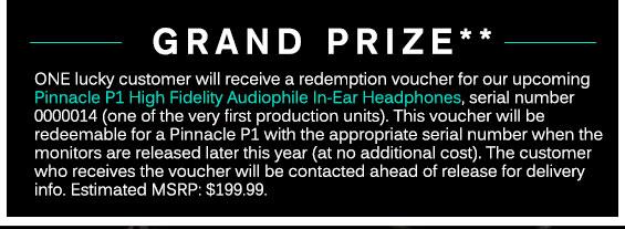 Grand Prize: Pinnacle P1