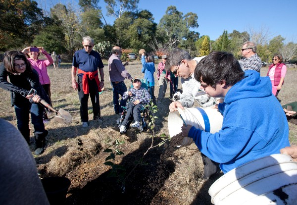 Parents and children plant the first tree on the farm.