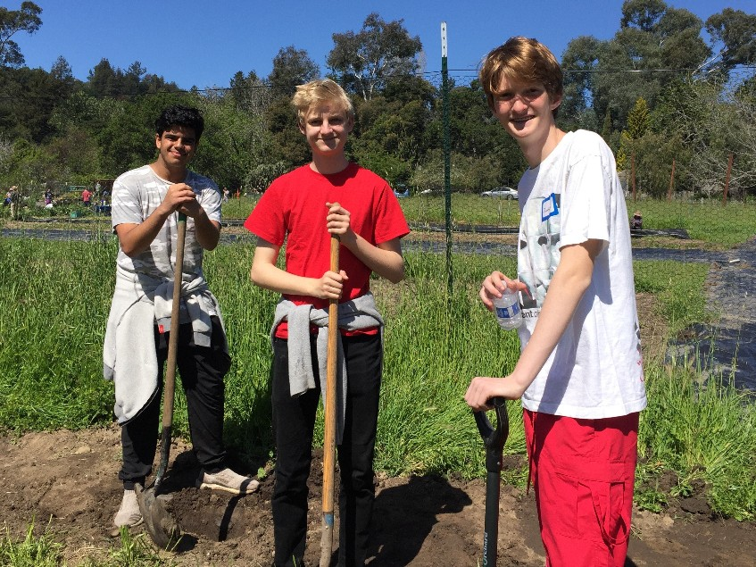 Palo Alto students lean on their shovels for a picture during a Tuesday volunteer day.