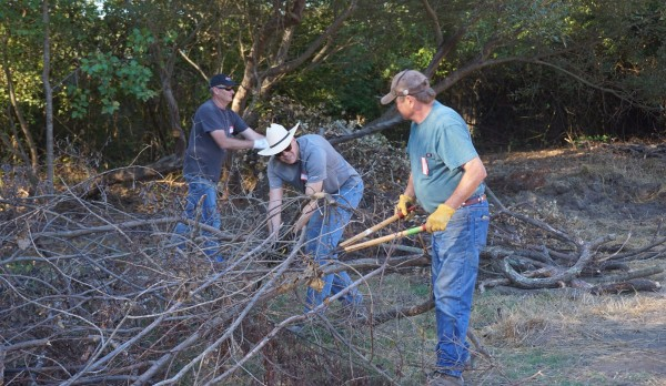 Volunteers use loppers and other tools to remove overgrown invasive plants.