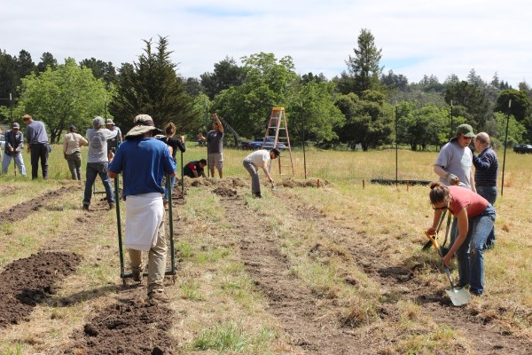 Workers prepare the kitchen garden during our May 14 work day.