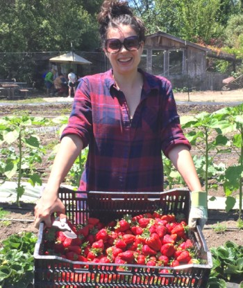 Farm volunteer Kaela holding a large tray of strawberries that she has picked.