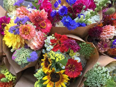 Floral bouquets ready for the farm stand.