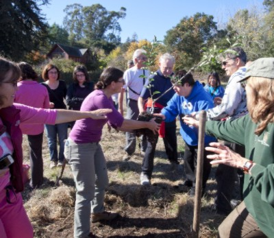 Families plant a tree at the farm site