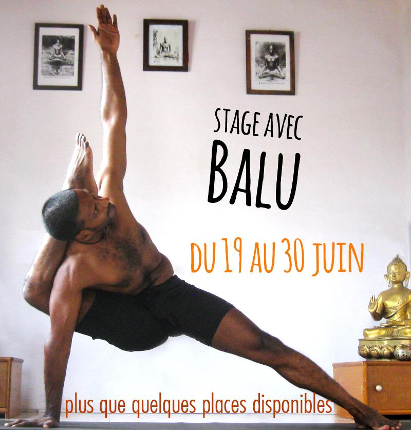 professeur indien de yoga ashtanga vinyasa Balu