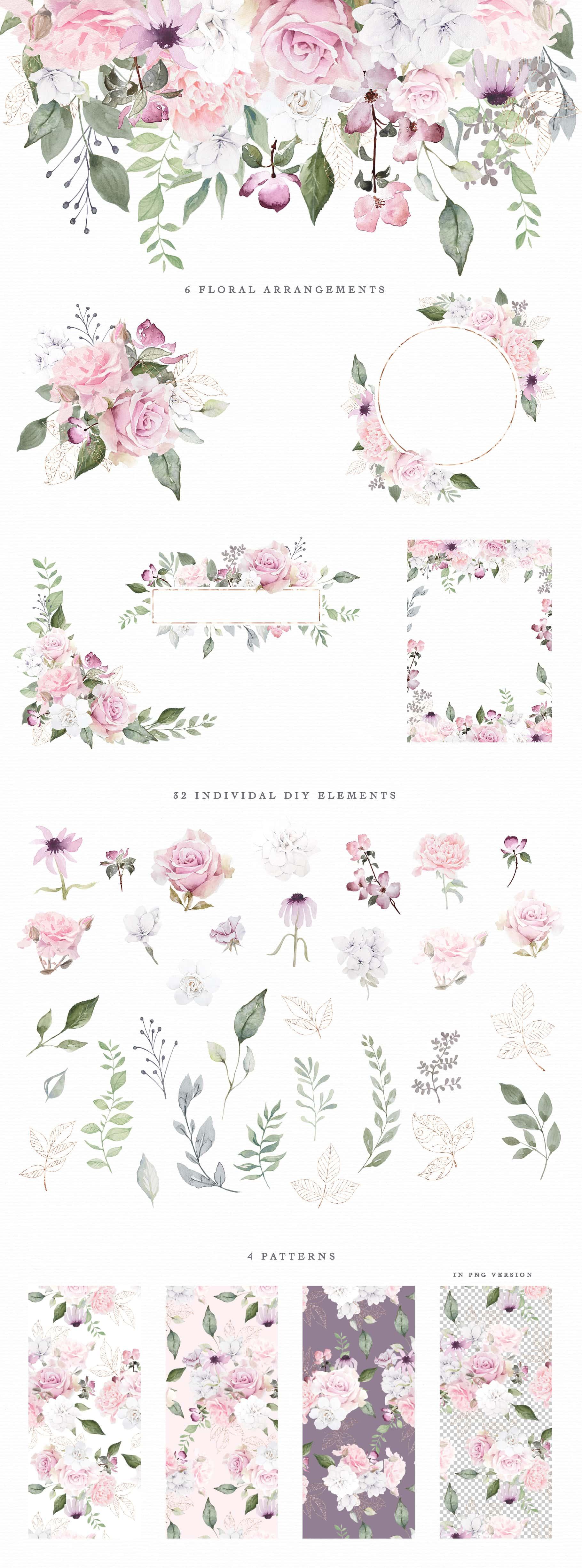Watercolor & Illustrations Bundle 14