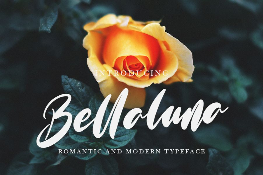 Handwritten font Preview 18
