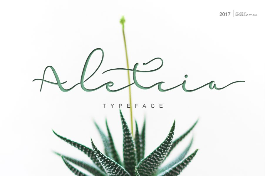 Handwritten Font Preview 17