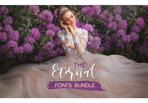 Eternal Fonts Bundle