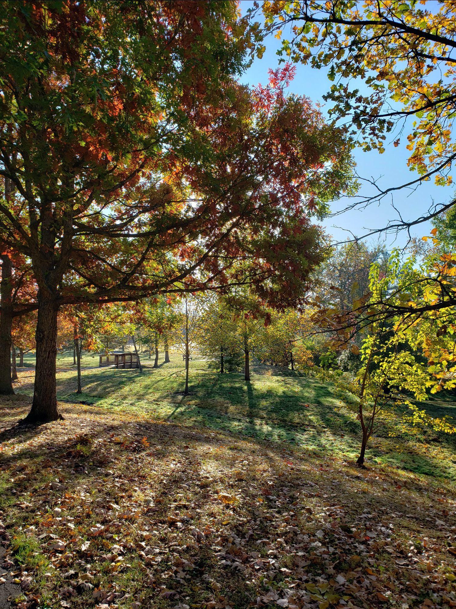 more fall in Ohio