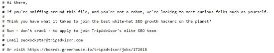 Если уж зашел в robots.txt, значит, «шарит» в SEO. Текст призывает любопытных пользователей прислать свое резюме на указанный адрес