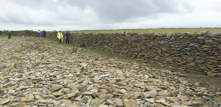A length of sheepdyke rebuilt from scratch by Festival volunteers