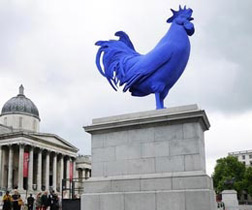 Giant blue cock