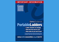 Portable ladders guidance
