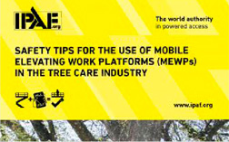 Tree care safety tips