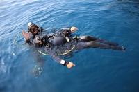Adaptive Diver DDI
