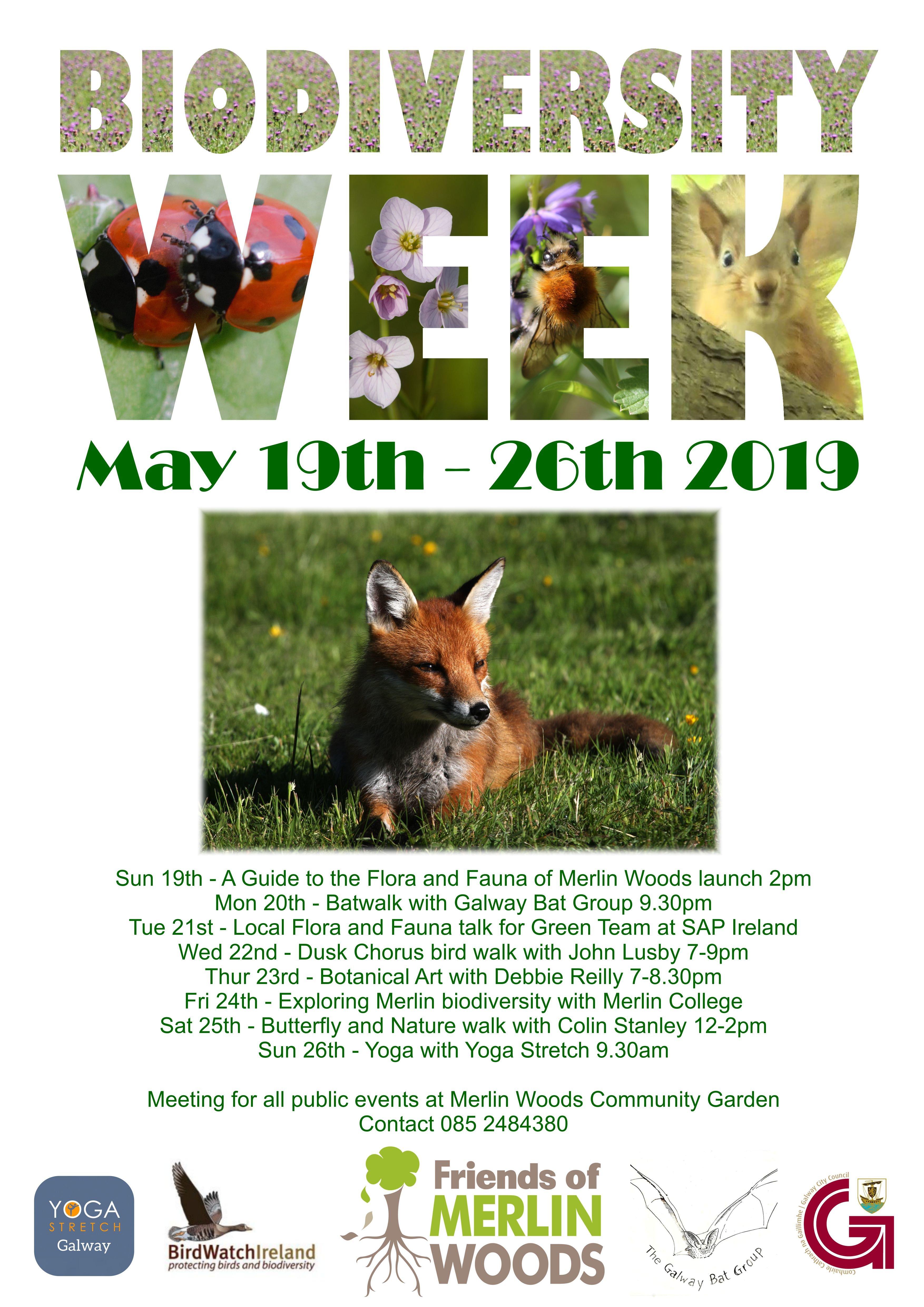FoMW Biodiversity Week Flyer