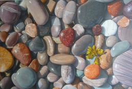 Beachstones with Seaweed by Herzl Kashetsky