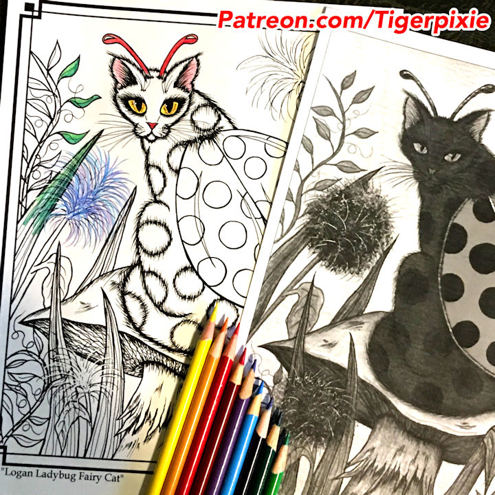 Logan Ladybug Fairy Cat Patreon Coloring Page