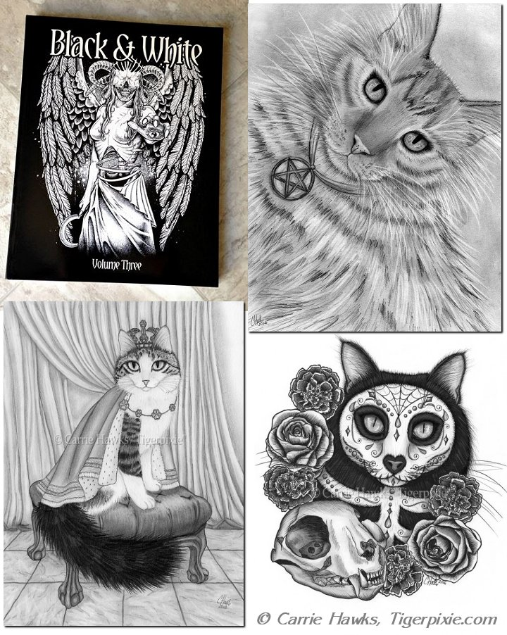 Carrie Hawks, Tigerpixie.com 3 Drawing in Out of Step Books Black and White Volume Three