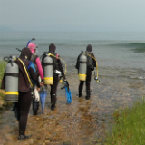 Four Divers walking into water