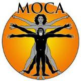 MOCA Da Vinci's Vitruvian Man/Ape