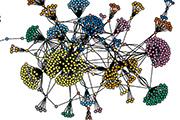Dark net drug network visualization