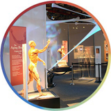 Human body preserved with plastination on display at COSI