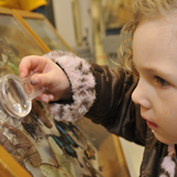 Small Girl using magnifying glass