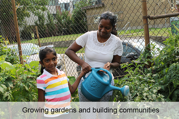 Growing gardens and building communities