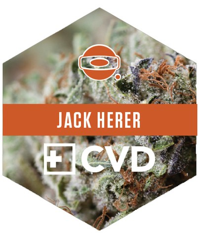 Jack Herer is now available in O.penVAPE Cartridges