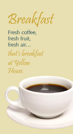 Fresh coffee, fresh fruit, fresh air... that's breakfast at Yellow House