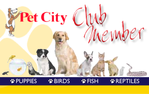 Pet City Club Member