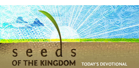 Seeds of the Kingdom - Today's Devotional