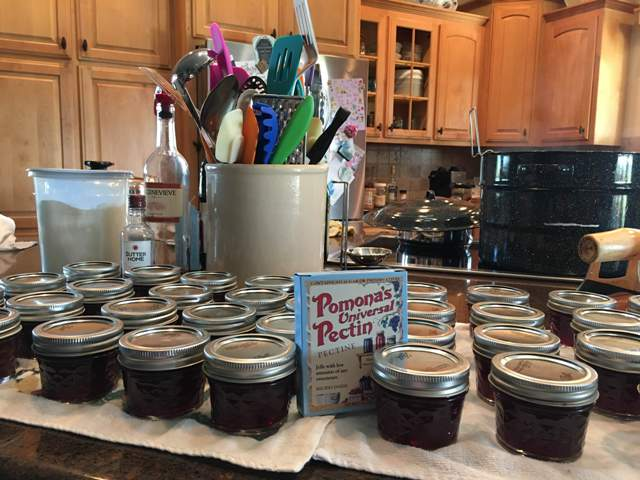 Jars of jam & jam-making equipment