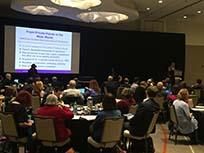 Sarah Pritchard of Northwestern giving Lightning talk