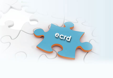 ECRD jigsaw puzzle piece