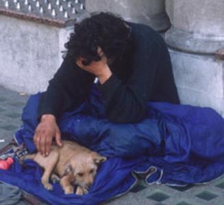 Help the Toronto Homeless