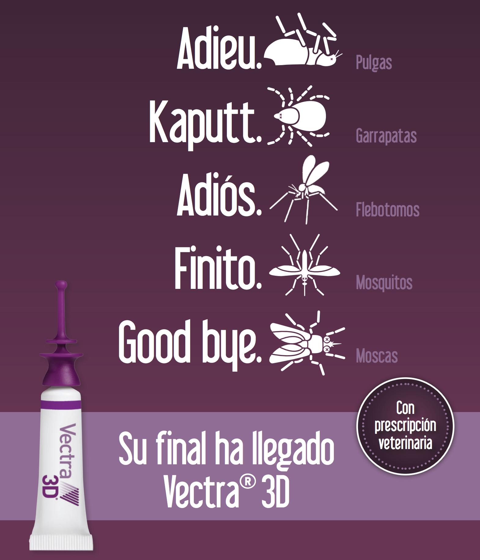 vectra 3d veterinaria