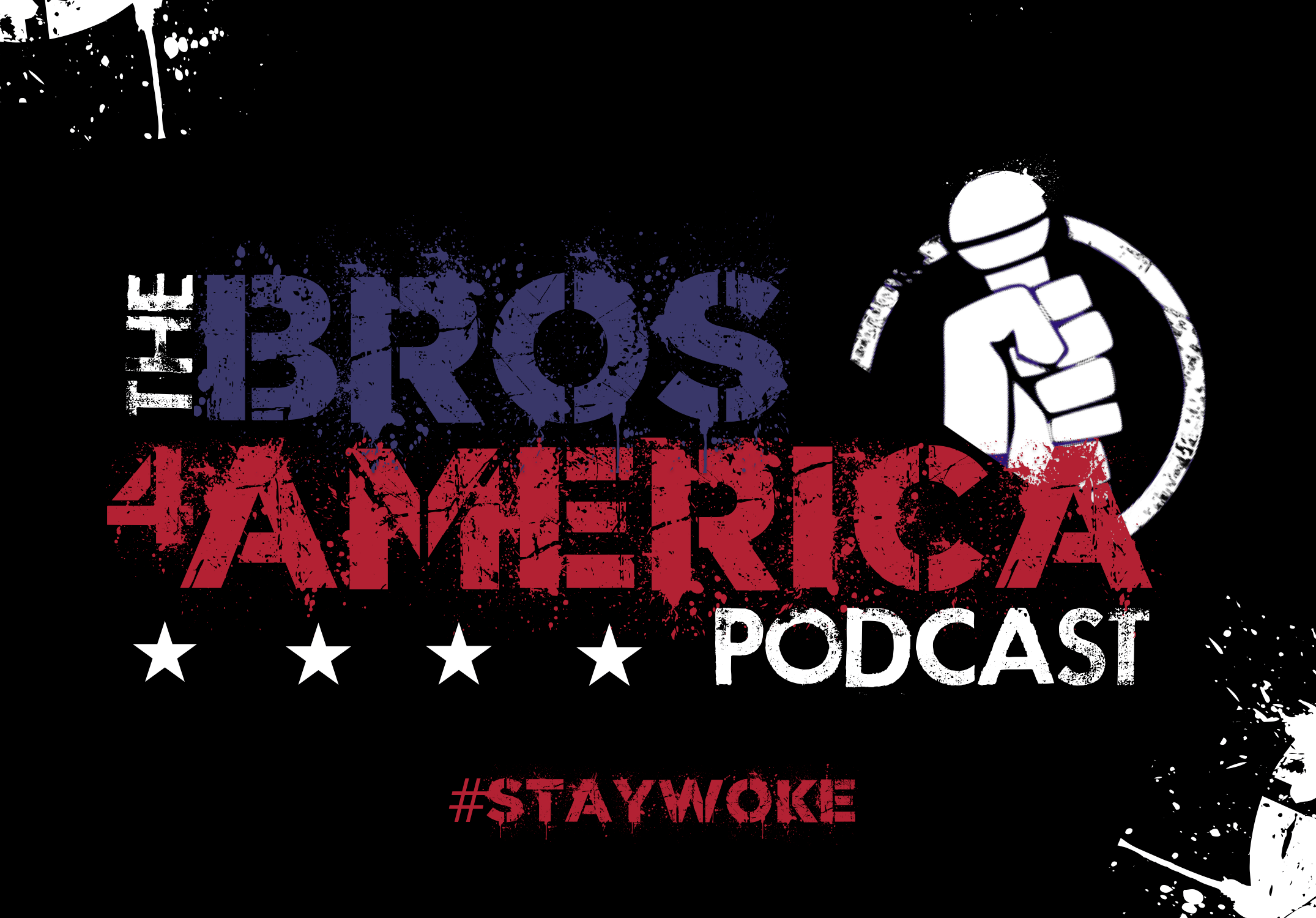 The Bros for America Podcast