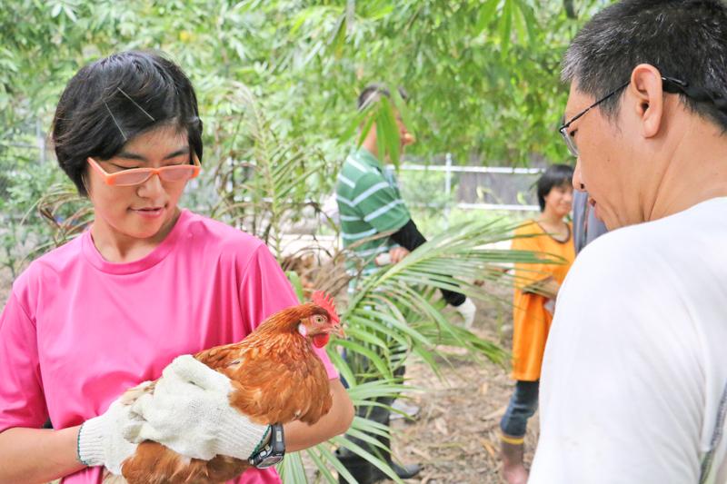 【黎明喜樂誌】帶您了解羽毛豐潤的雞,怎樣成為黎明幫助身心障礙者的得力助手!